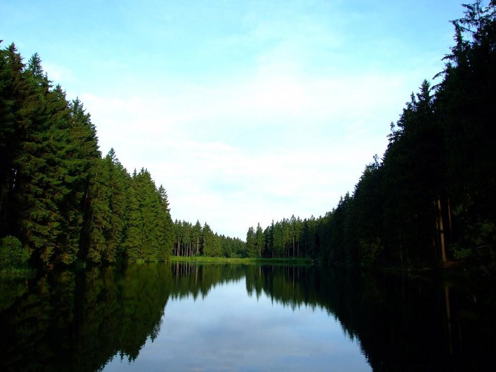 Am mittleren Grumbacher Teich