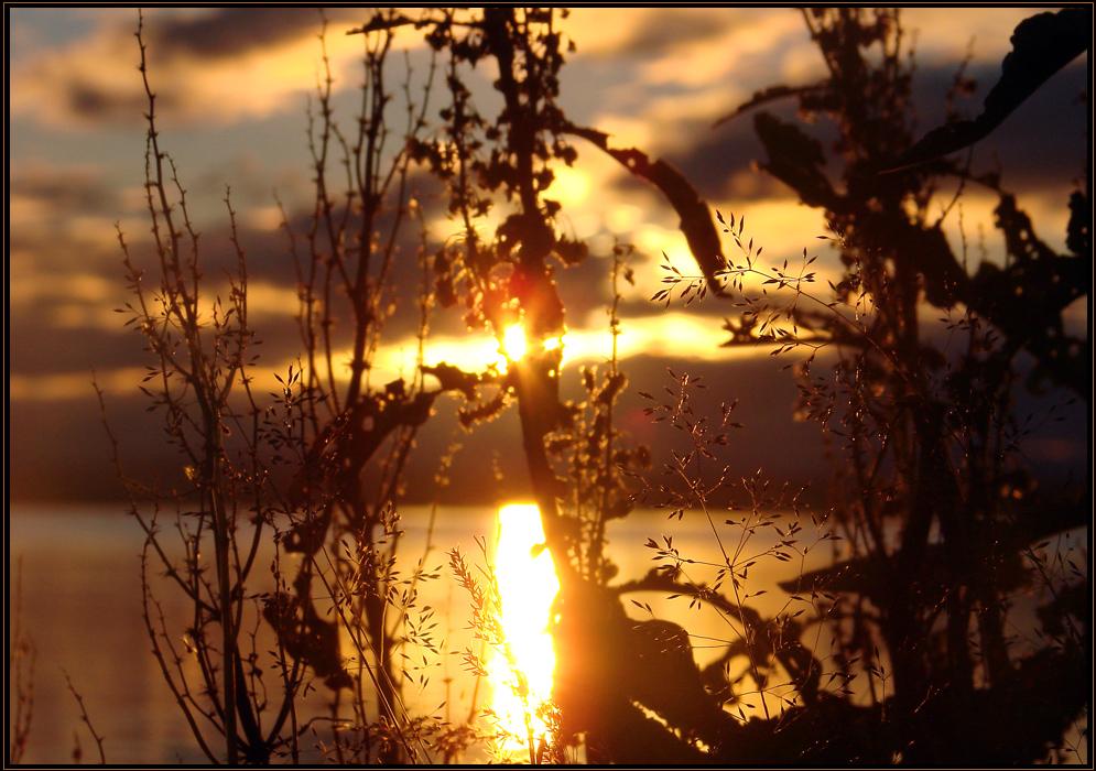 am myvatn - island/iceland 2007
