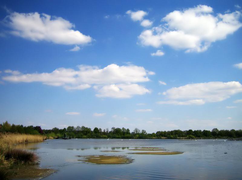 am Naturschutz-See