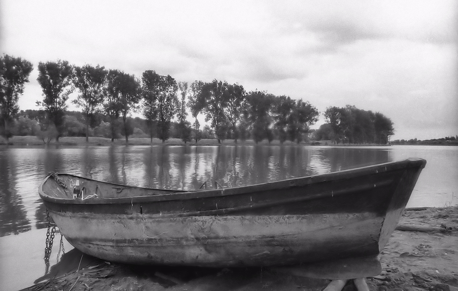 Am Niederrhein # 156