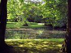 Am Niederrhein # 239 ( Kleve , am Tierpark )