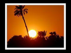 Am Nil zwischen Edfu und Kom Ombo 6