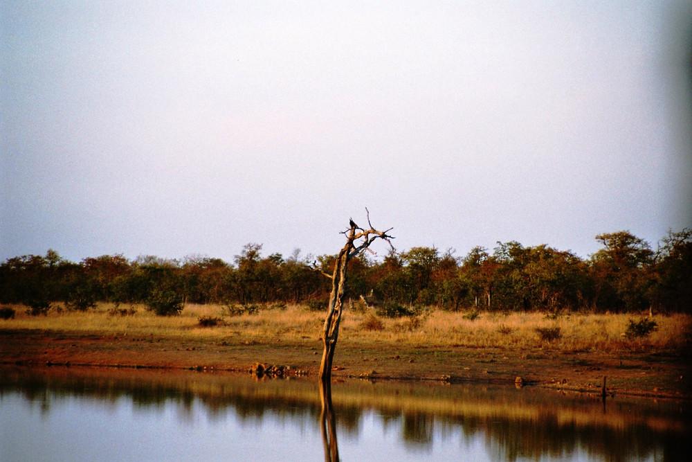 Am Olifantfluss 1