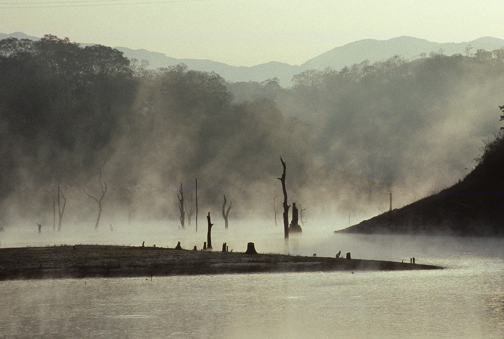 am Periyar Lake