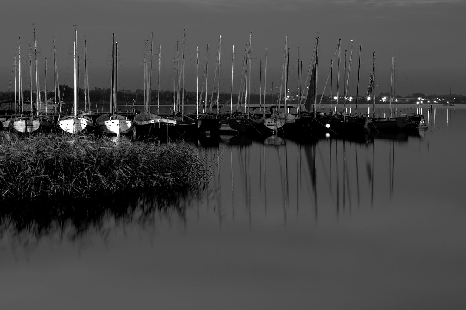 Am Rande der Hanse Sail 2010
