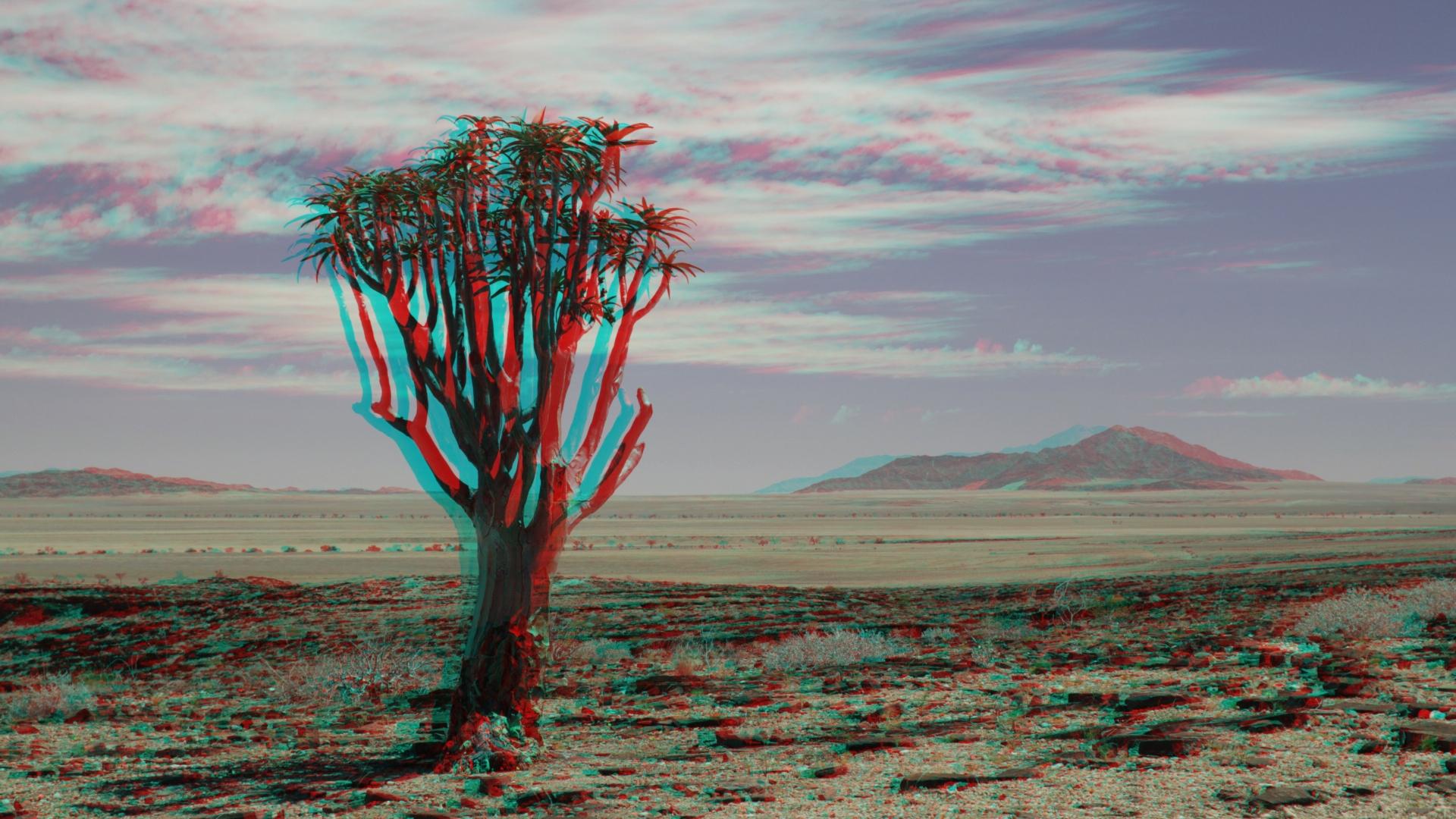 Am Rande der Namib Wüste + MPO