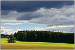 Am Rande des Erzgebirges...