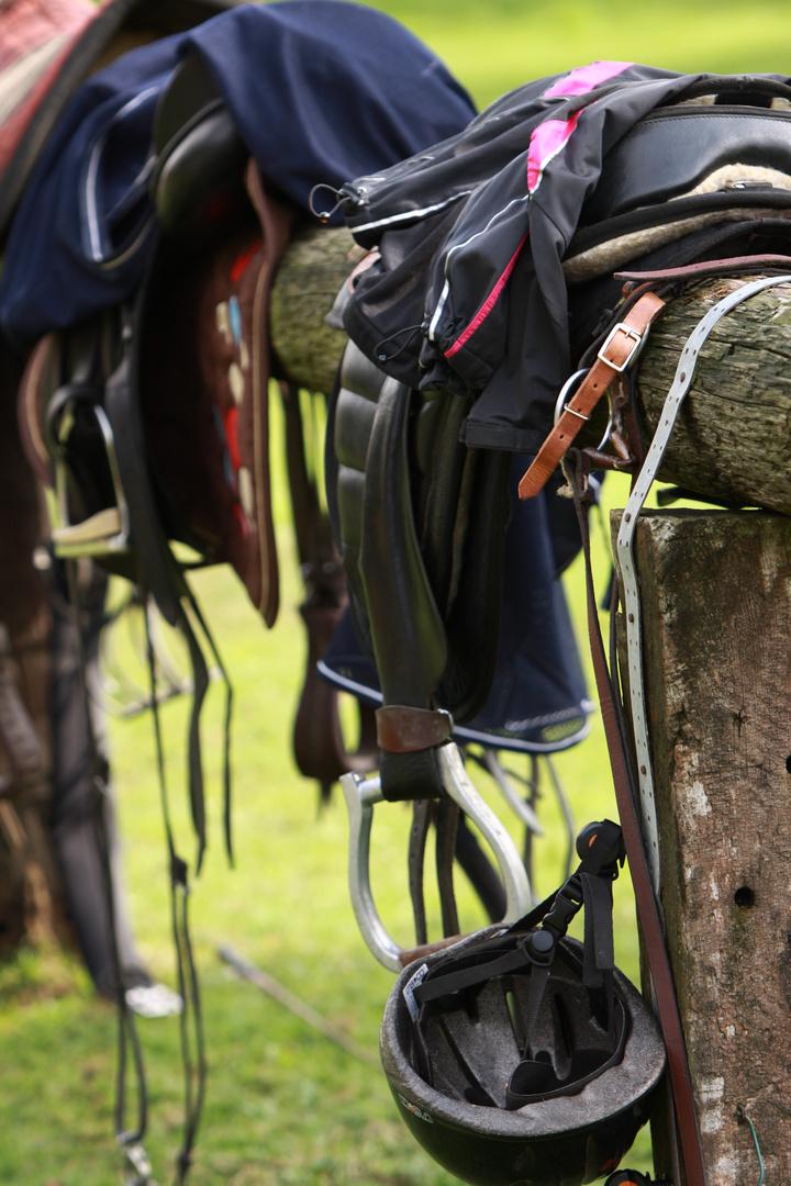 am Rande einer Pferdeveranstaltung