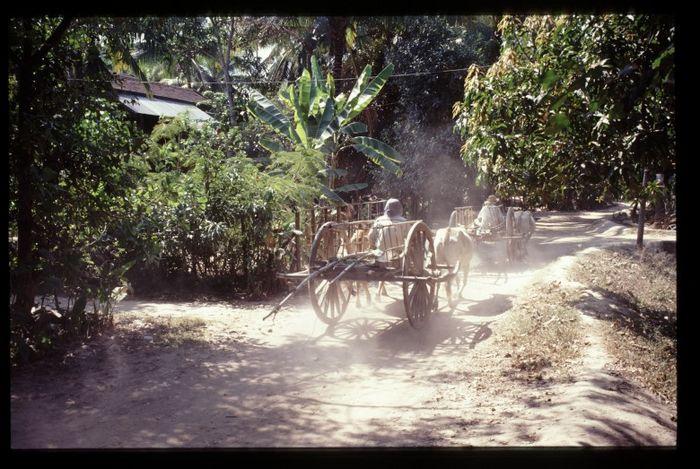 Am Rande von Siem Reap