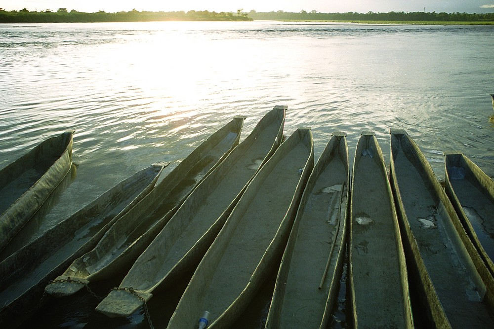 am Rapti River - Chitwan National Park