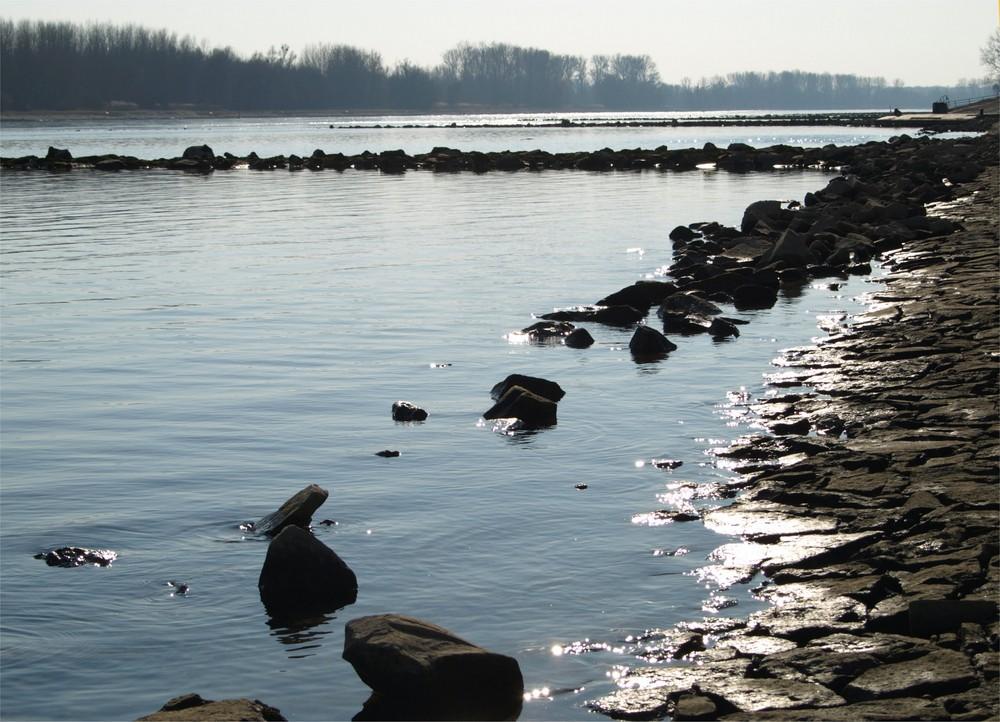 am Rhein bei Neuburg I