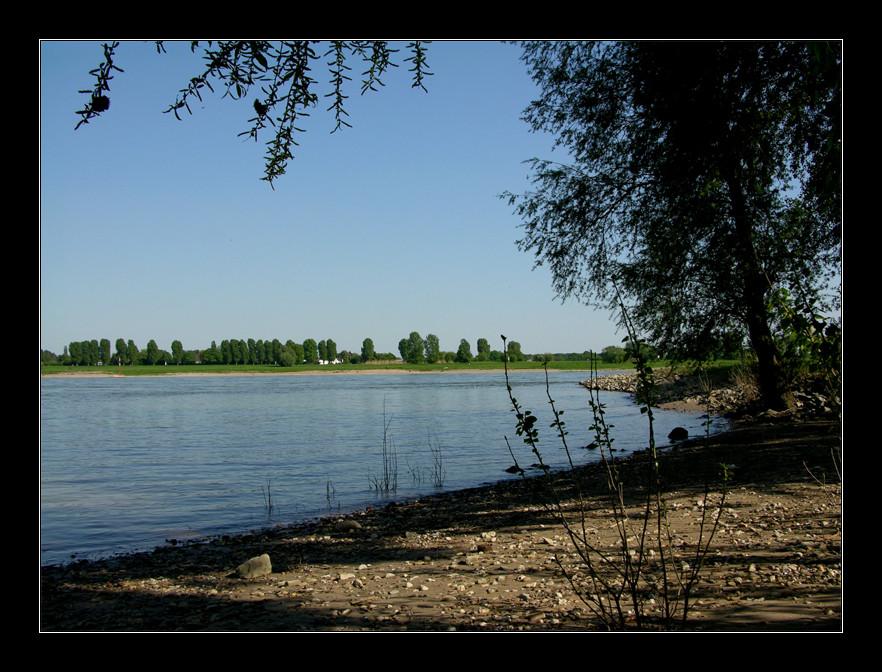 ...am Rhein so schön !