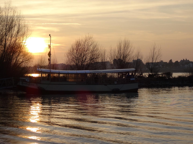 ...am Rhein zu Hause...