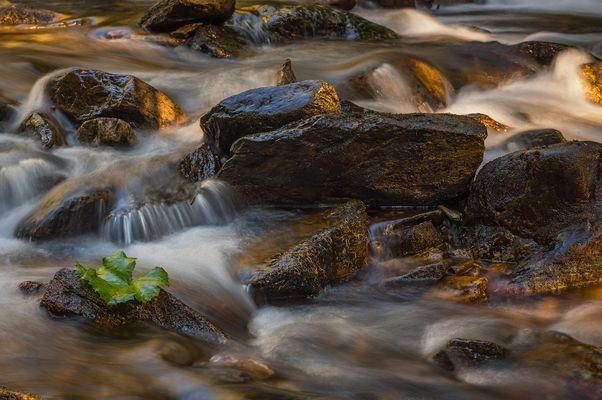 Am Riesach Wasserfall