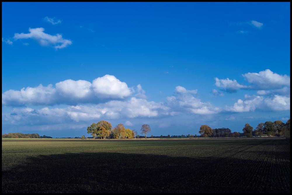Am Scharrelberg im Herbst