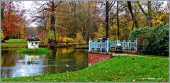 Am Schwarzen See in Branitz  ..