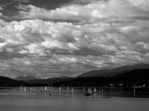 AM SEE 05