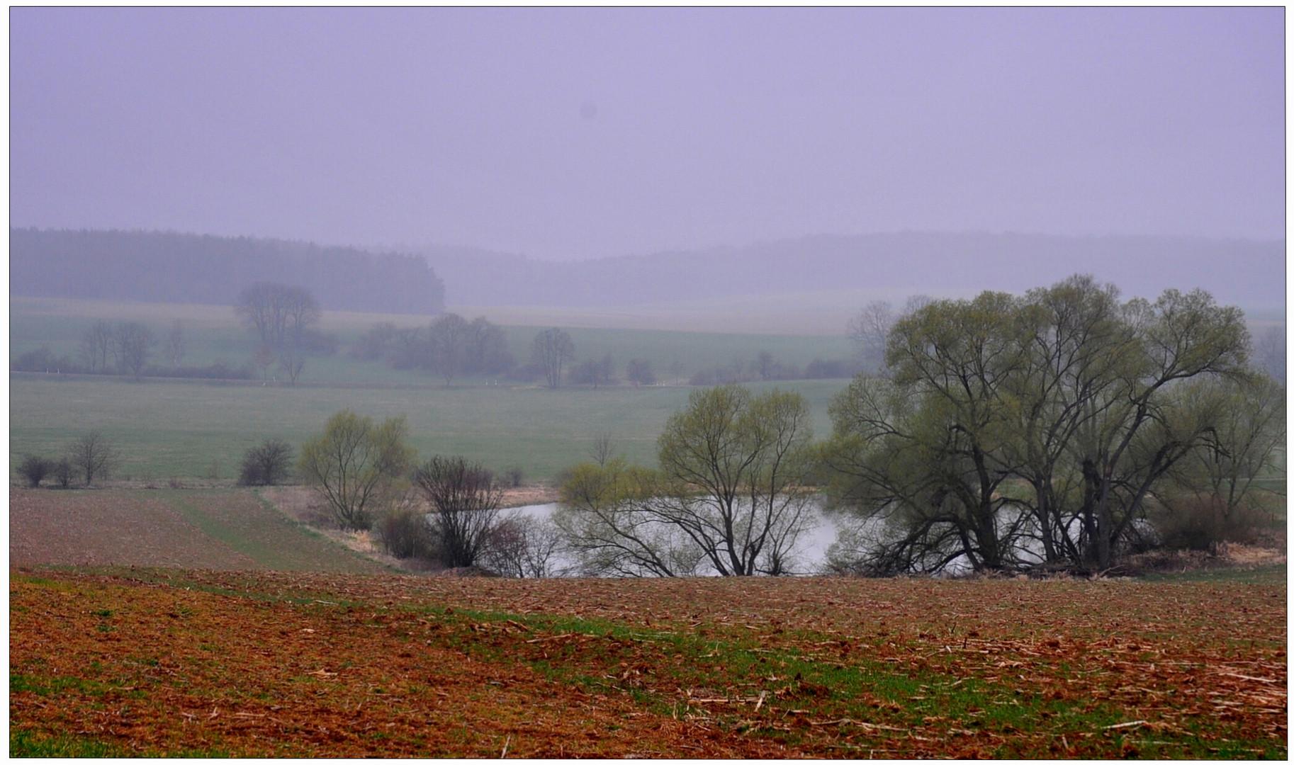 Am See III (en el lago II)