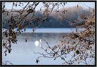 Am See in Oldenburg