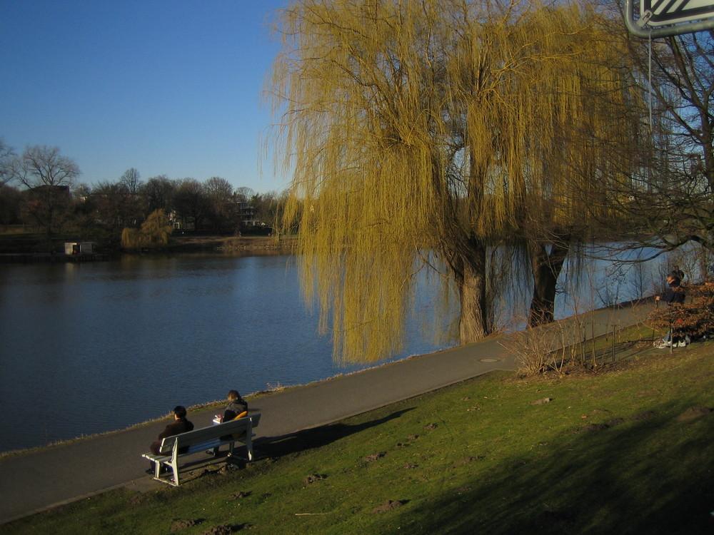 am Stadtsee
