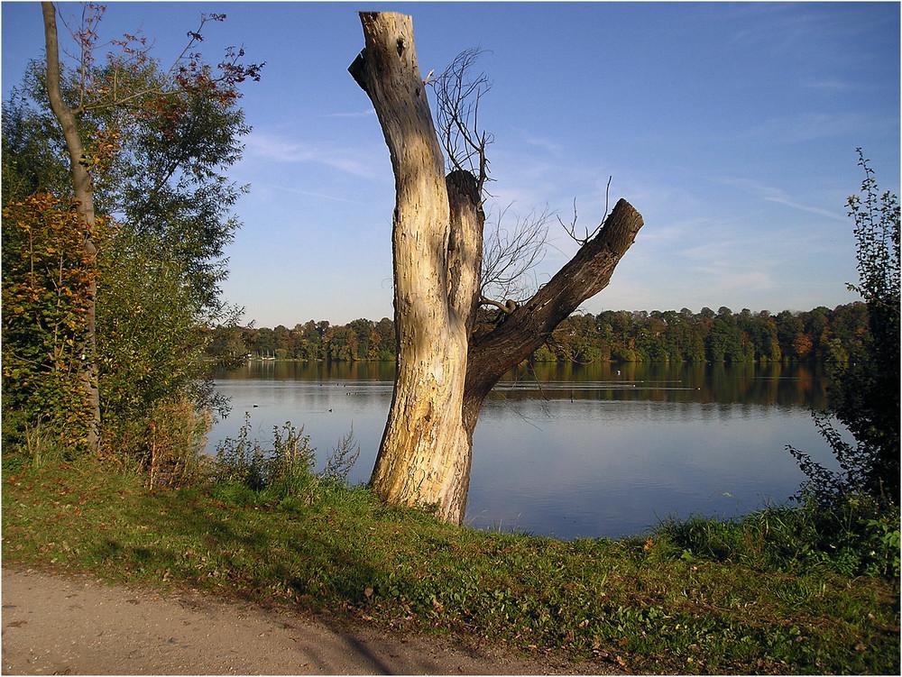 Am Stausee-Glauchau 2