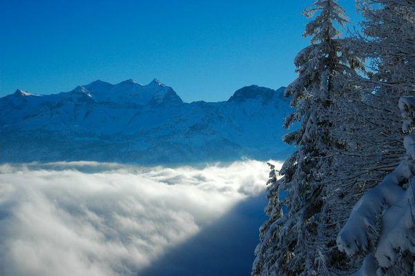 am steilen Berg oberhalb der Schneewolken....