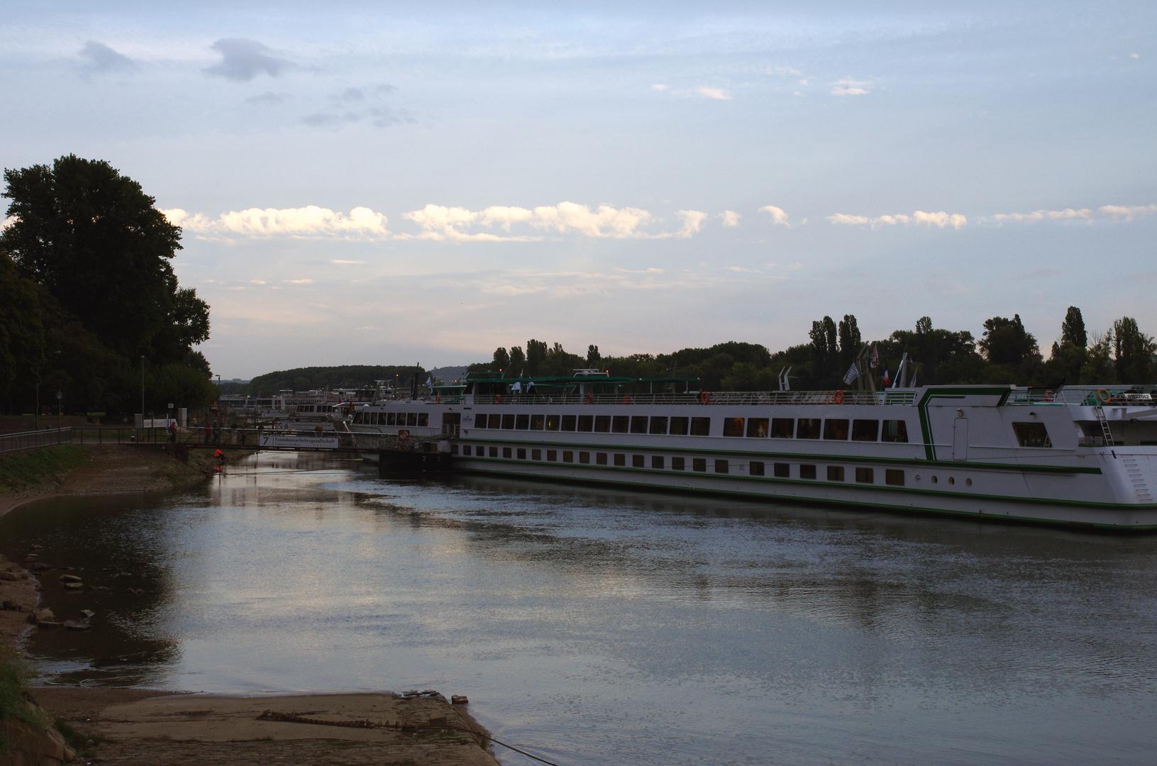 Am stillen Rhein 001