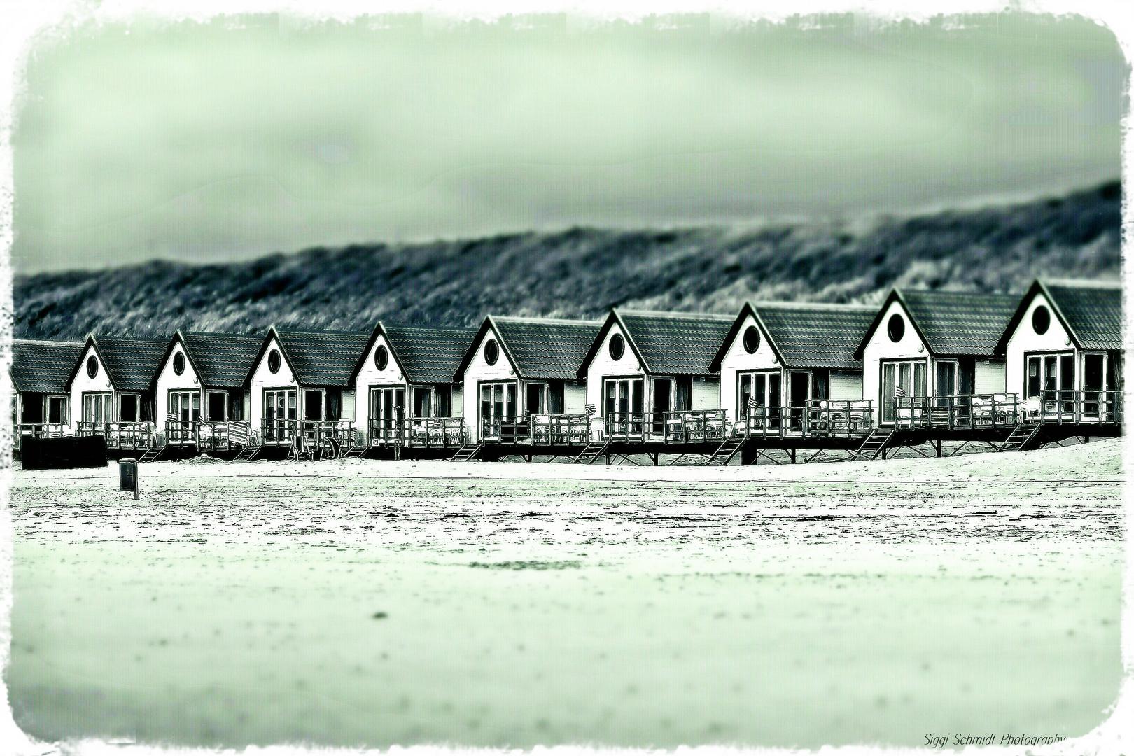 Am Strand der Nordsee / NL