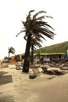 Am strand- Holland