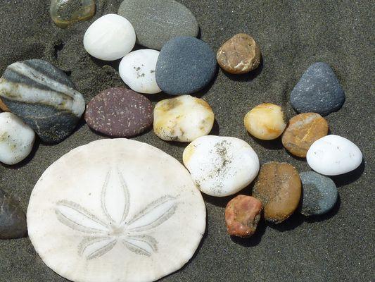 Am Strand im Nordwesten der USA