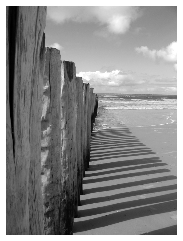 Am Strand in Holland ...