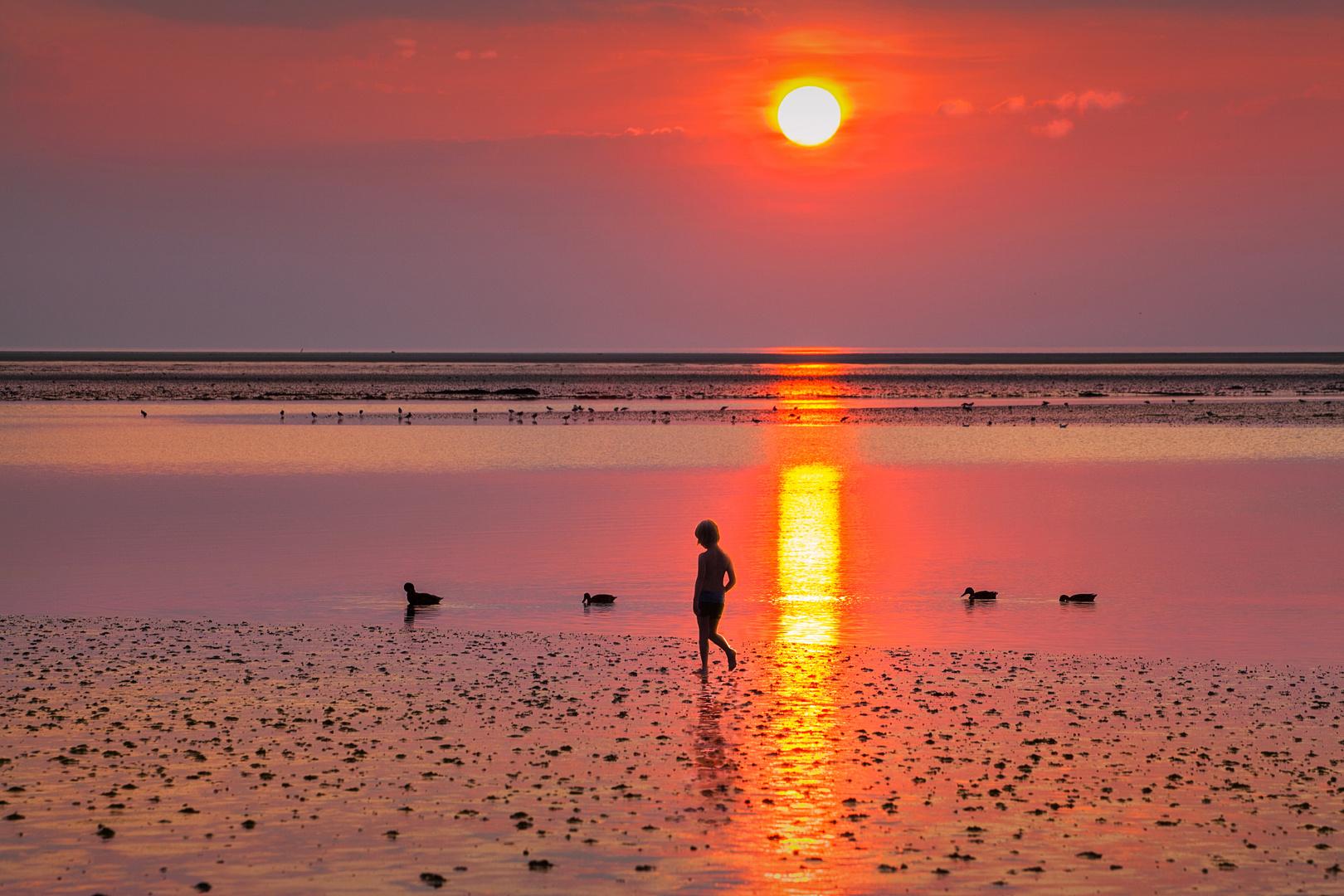 Am Strand meiner Träume