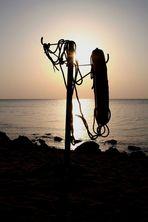 am Strand von Hurghada