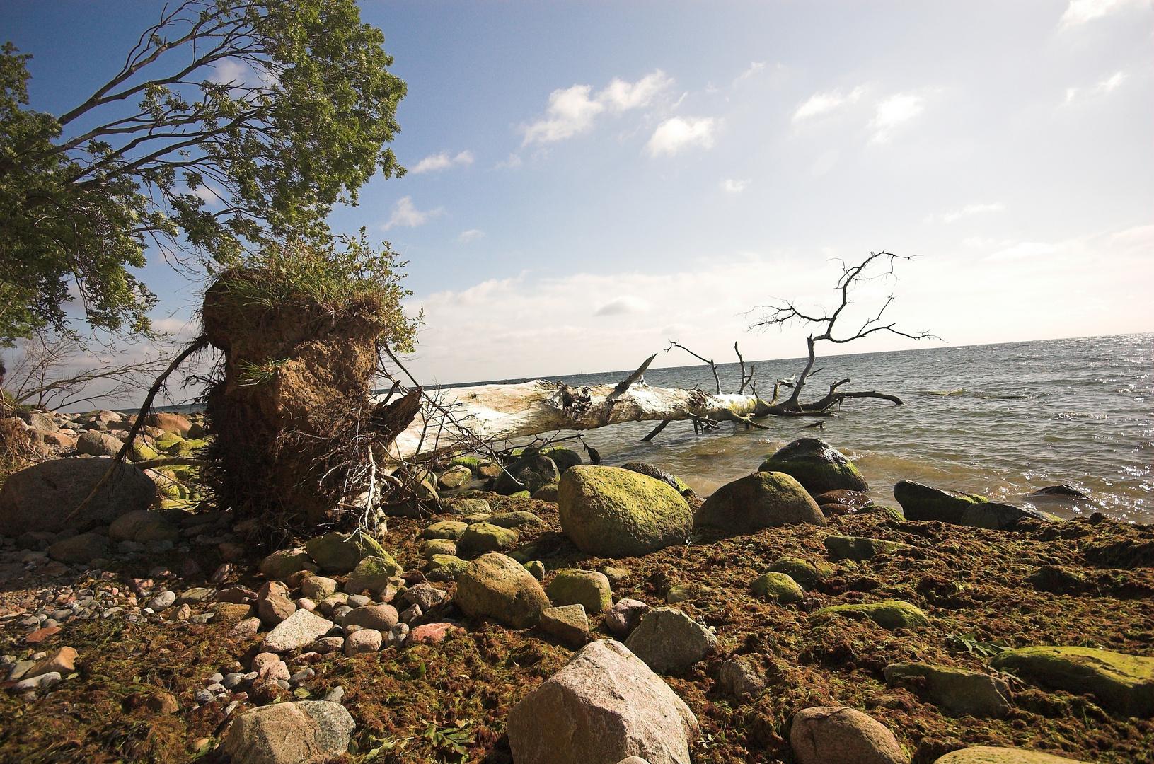 Am Strand von Kap Arkona / Rügen