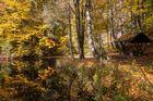 Am Teich im Oktober