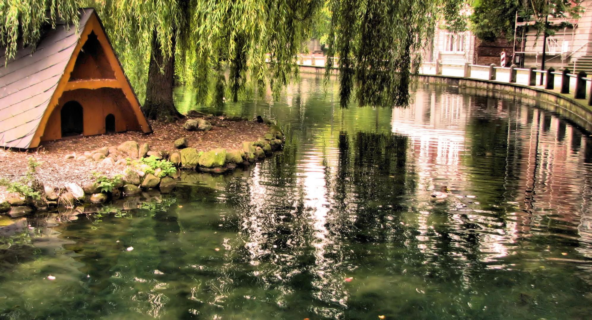 Am Teich in Geseke NRW