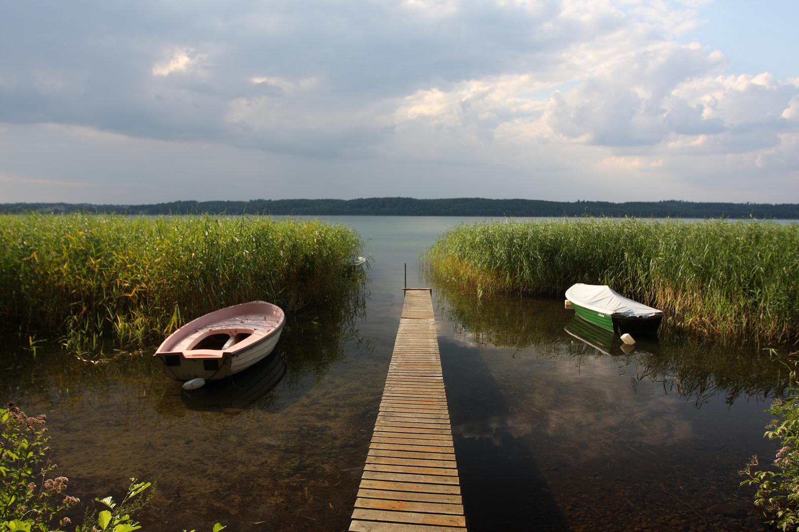 Am Tollensesee