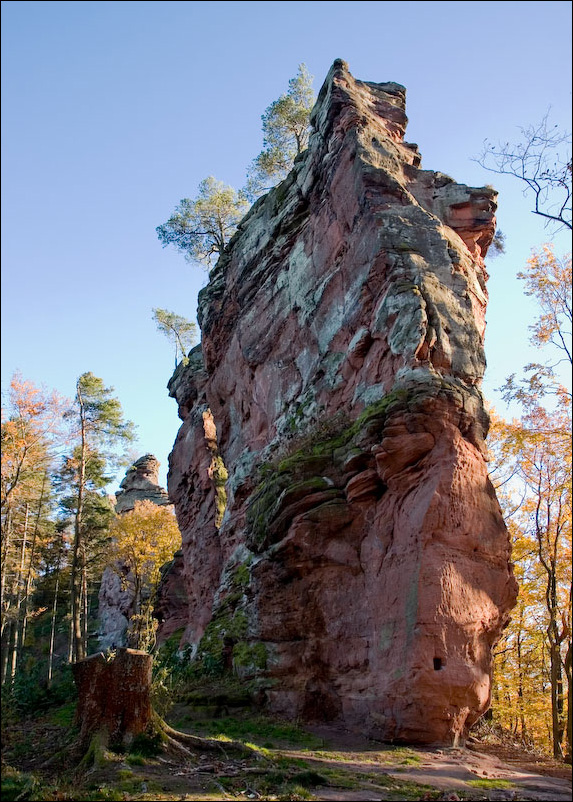 Am Trifels im Herbst