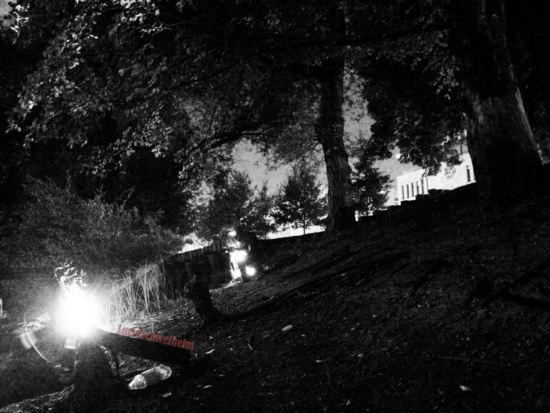 Am Ufer bei Nacht