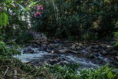 Am Ufer der Dhünn