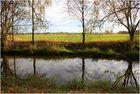 Am Ufer der Spree bei Spreewiese