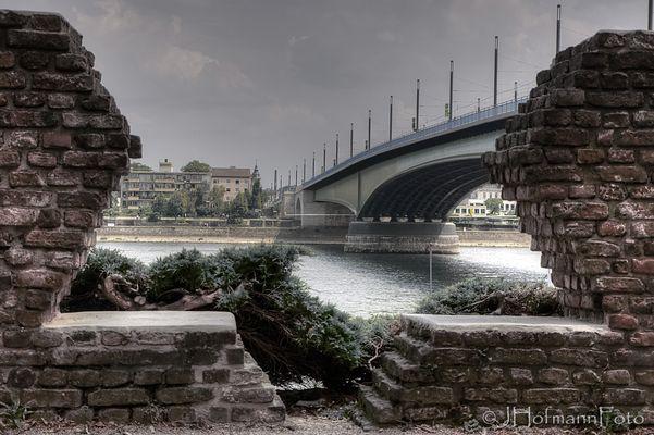 Am Ufer des Rheins