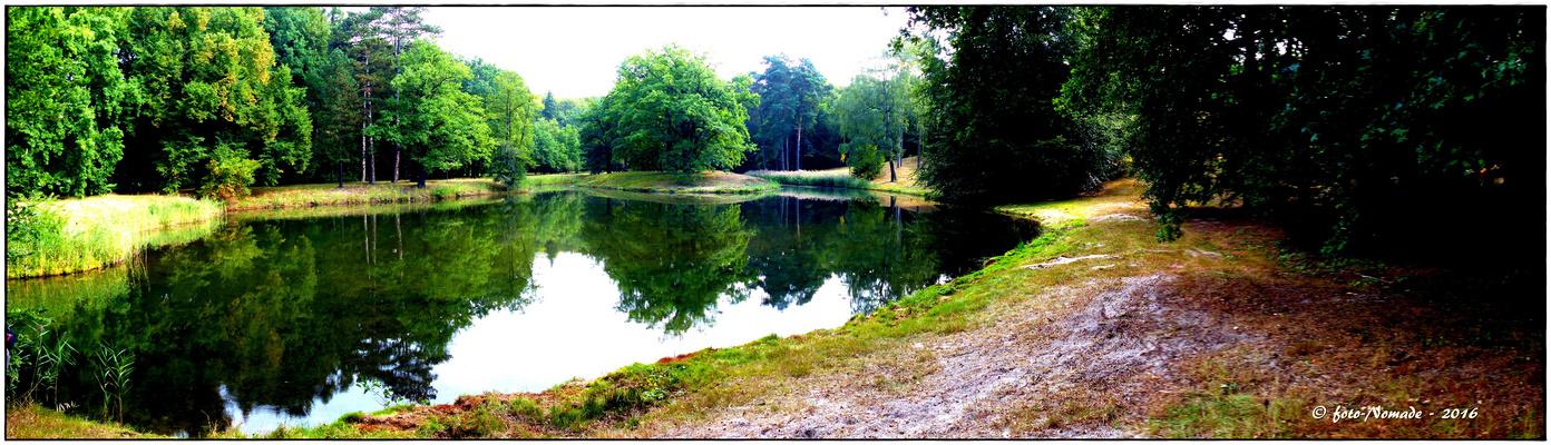 Am Ufer des Schlangensee ..