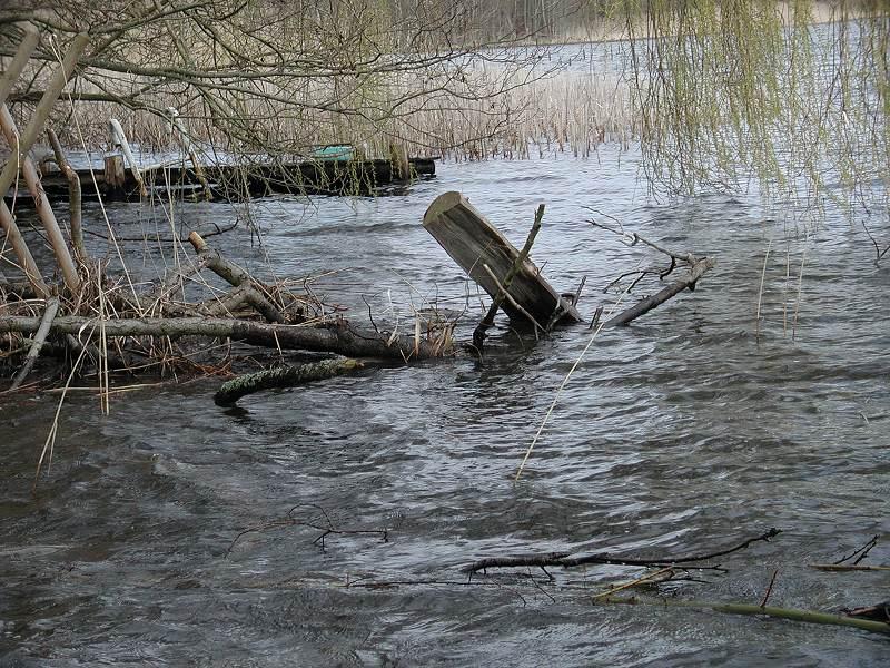 am Ufer des Zermützelsees   (Land Brandenburg)