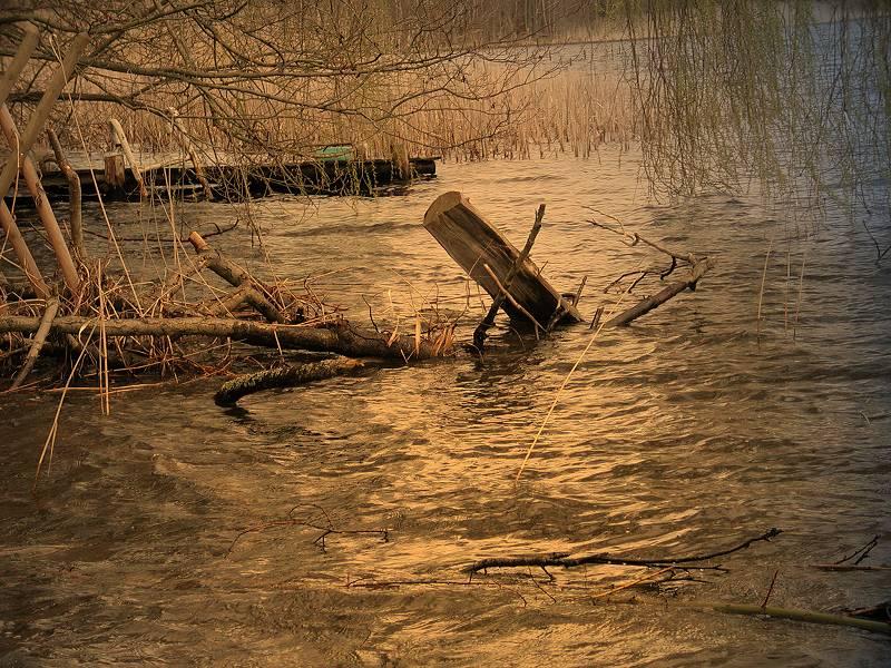 am Ufer des Zermützelsees mit Photoimpact 6 nachbelichtet