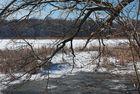 am Ufer eines Waldsees in der schon wärmenden Februarsonne