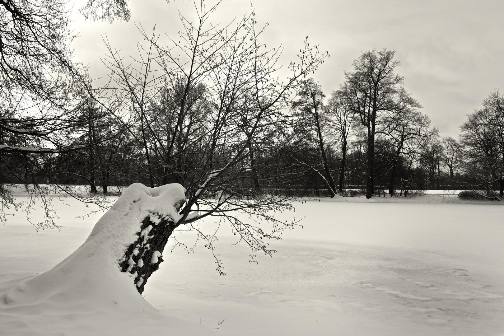 am verschneiten See