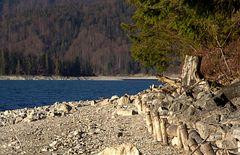 Am Walchensee