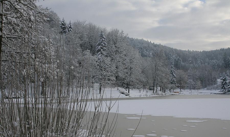 Am Waldsee 01