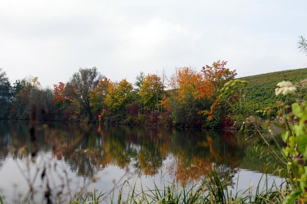 Am Wasser im Herbst